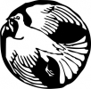 dove_in_circle