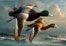 duck_art