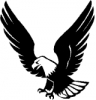 eagle_BW