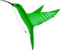 hummingbird_green
