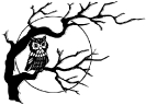 Owl_in_tree