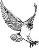 owl_swooping