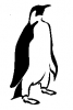 penguin_formal