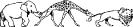 animal_parade_giraffe_lion_elephant