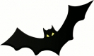 bat_w_yellow_eyes