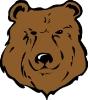 bear_head_1