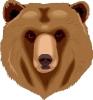 bear_stare