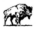 buffalo_2