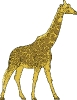 giraffe_sharp