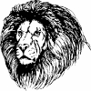 lion_head_BW