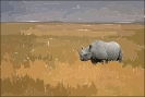 rhino_on_savannah