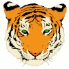 tiger_head_2