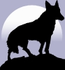 wolf_silhoette_moon_background