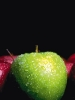 fruit foto_18
