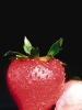 fruit foto_40
