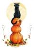 Halloween_48