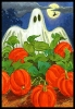 Halloween_72