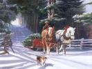 Kerstmis_119