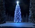 Kerstmis_154