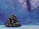 Kerstmis_195