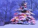 Kerstmis_287