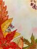 herfst_154