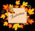 herfst_15
