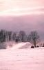 foto winter_116
