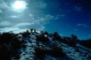 foto winter_123