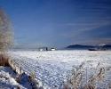 foto winter_139