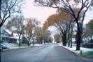 foto winter_13