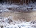 foto winter_148