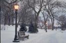 foto winter_14