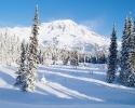 foto winter_151