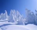 foto winter_167