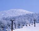 foto winter_170