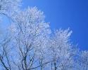 foto winter_181