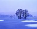 foto winter_182