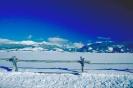 foto winter_18
