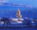 foto winter_195