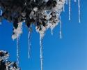 foto winter_200