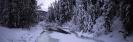 foto winter_208