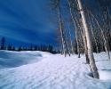 foto winter_212