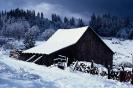 foto winter_225