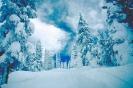foto winter_22