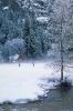 foto winter_238
