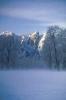foto winter_241