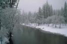 foto winter_244