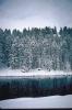 foto winter_25