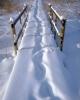 foto winter_38